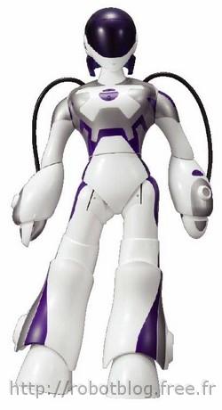 Robot humanoide a vendre