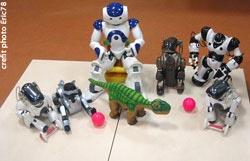 Aldebaran Robotics Newsletter Juillet 2008 robots-nao-pleo-aibo #1