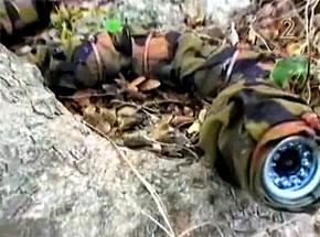 Snake Robot Serpent Espion Israel #2