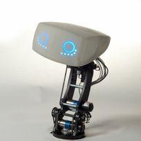 Aida - Robot de compagnie pour automobile #1