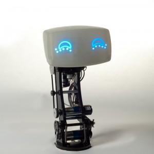 Aida - Robot de compagnie pour automobile #6
