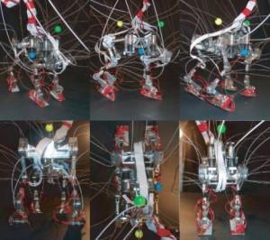 Runbot2 - Robot Qui court #2