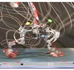 Runbot2 - Robot Qui court #1