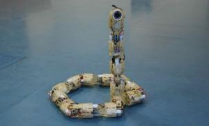 SnakeBot - Le Robot Serpent Espion des Israéliens #1
