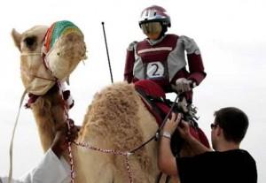 Robot Jockey - Course de Dromadaires #1