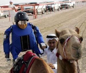 Robot Jockey - Course de Dromadaires #4