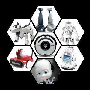 InnoRobo - Le Salon Européen de la Robotique de Service à Lyon en Mars 2011 #4