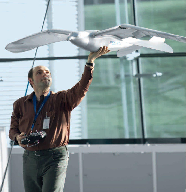 L'aile à caisson pilotée par un robot Smartbird-Festo-Robot-Oiseau-05