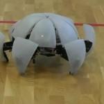Morphex - Robot Hexapod qui Roule #1