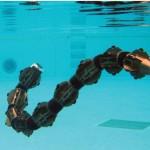 ACM-R5 - Le Robot Serpent Amphibie de Hibot #5