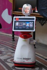 InnoRobo-2013-Domestique-Furo-01