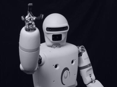 Robot Reem Pal-Robotics #1
